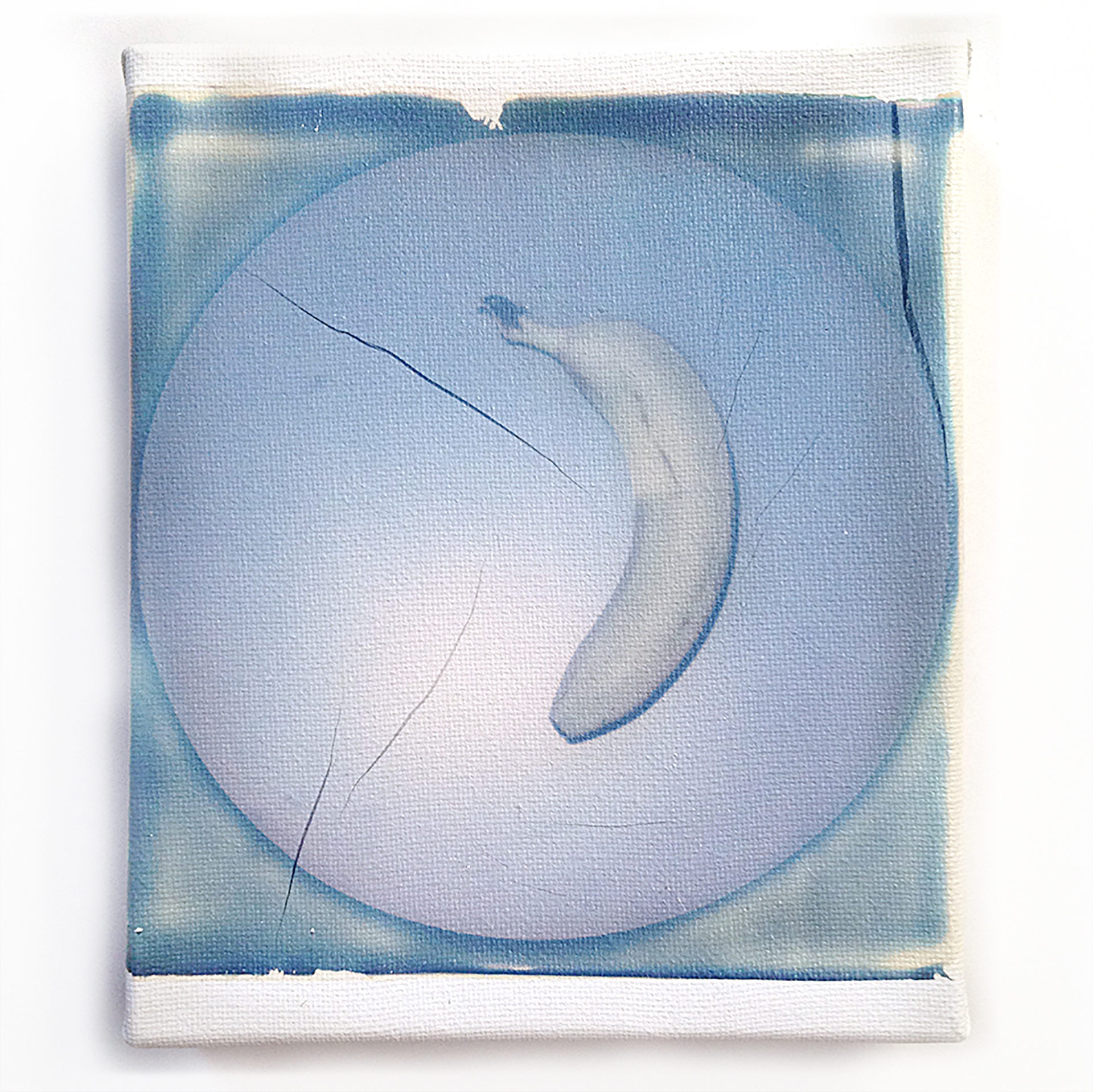 Banana peel, Polaroid SX70 émulsion lift sur toile, 15 x 12 cm, 2016, Collection privée Benetton